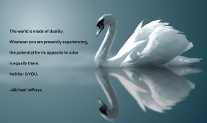 mj-quote-swan-reflection