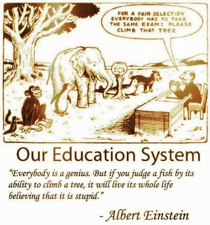 Albert Einstein - Our Education System