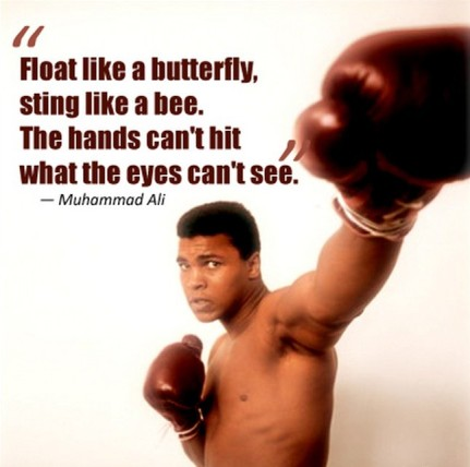 Image result for float like a butterfly sting like a bee