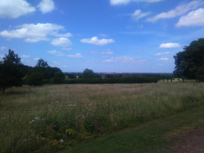 View of Windsor Castle across the park