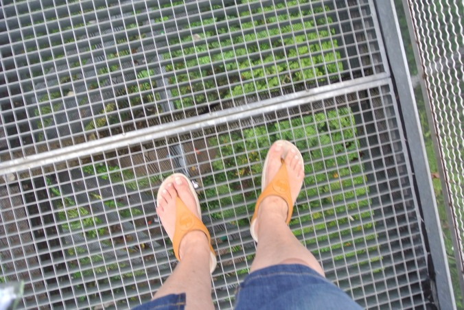 Don't look down!