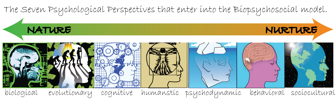Phychology in perspective