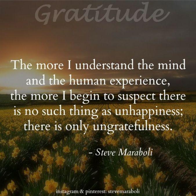 Gratitude - Steve Maraboli