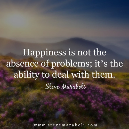 happiness - steve maraboli