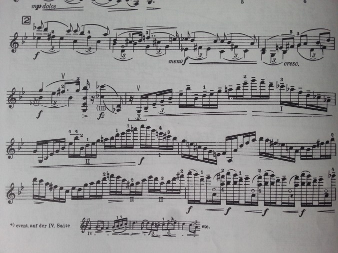 A section of the beautiful 2nd movement from my score.