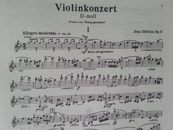 Sibelius Violin Concerto In D Minor Rhapdy In Words