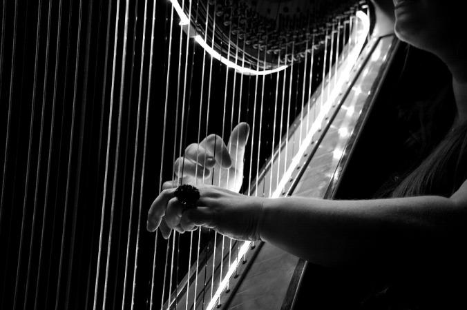 silence-harp-in-concert