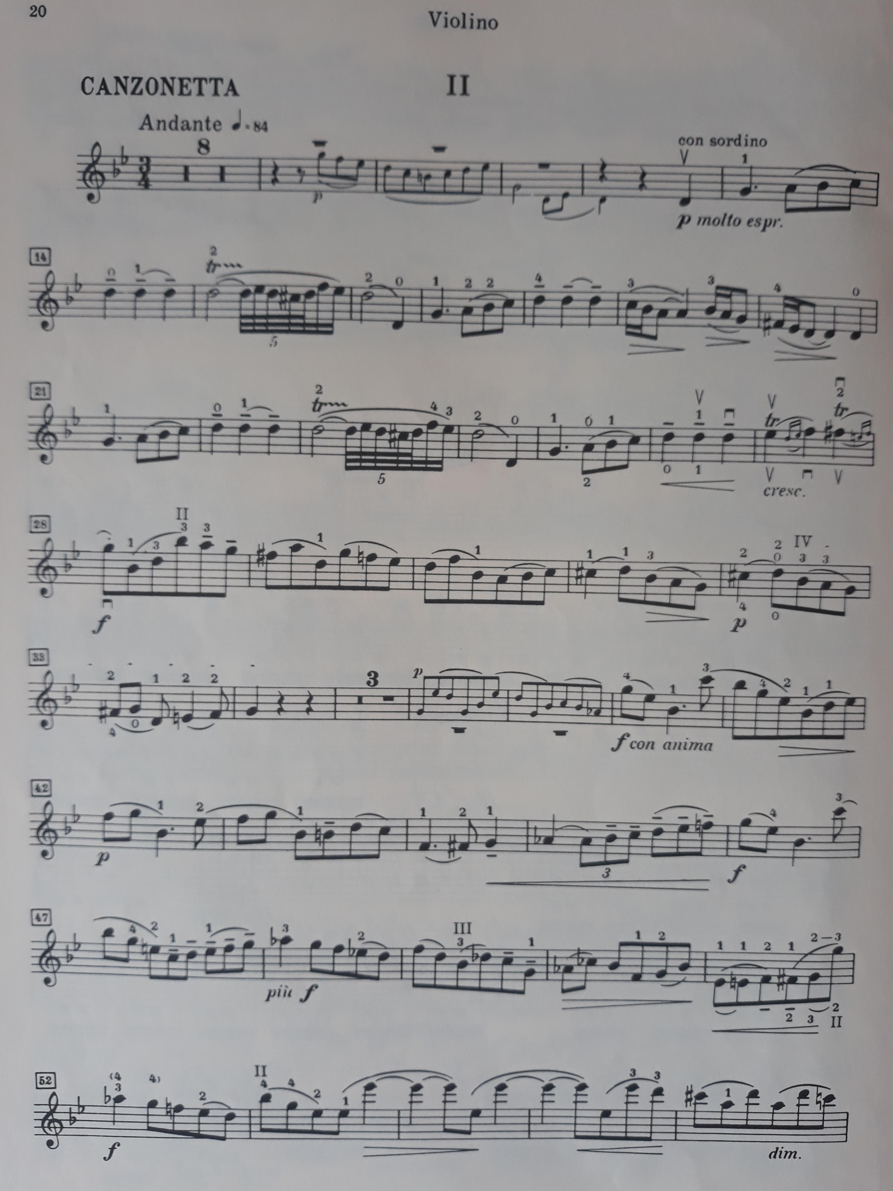 Violin | rhap so dy in words
